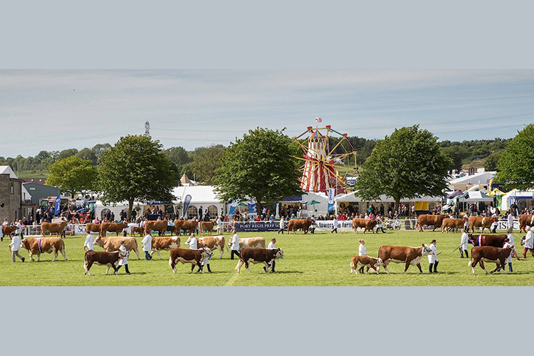 Bath & West Showground